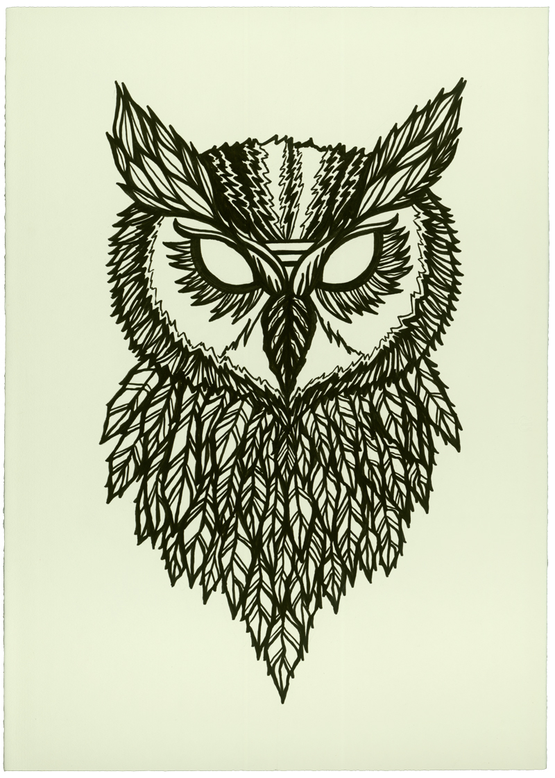 Owl Drawing Wallpaper Wallpapers Gallery