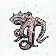 Octopus (Cephalopods)